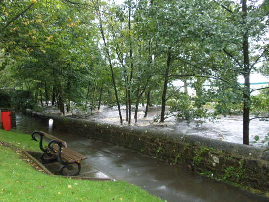River at Pateley near showground - Michael Thompson