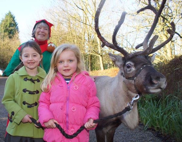 Festive Cheer! Mille Reilly and Gracie Nicholson, both aged six and both from Pateley Bridge. with Axel the Reindeer and Elaine Savage from Disability Action Yorkshire