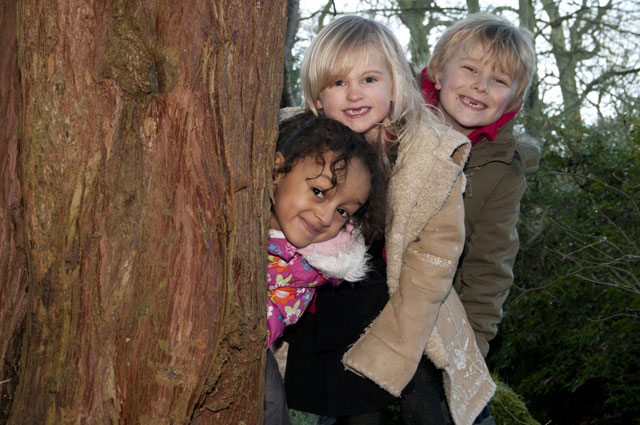 Amira Chibhaga, Ella Mizen and Rafe Colman-Chadwick peek out from behind a tree at Harlow Carr.