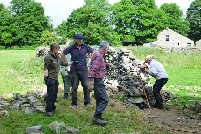 Suzannah Barningham (far left in photo – trainee at YDNPA) supervises the North West Walling volunteers in Hawes