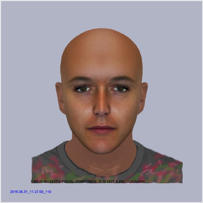 York-racially-aggravated-assault---e-fit-of-suspect---1-June-2015