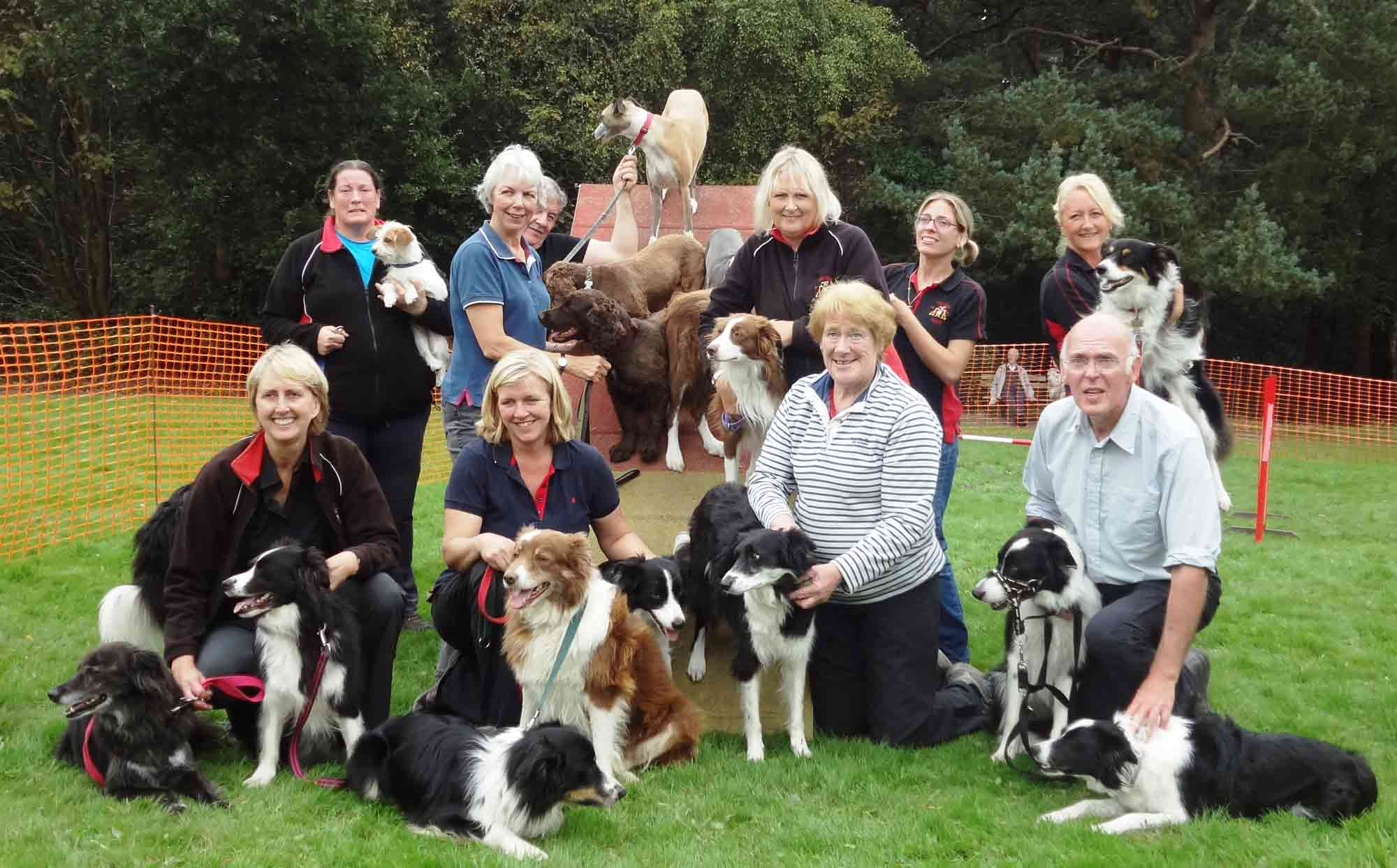 more-dogs-pinewoods-harrogate