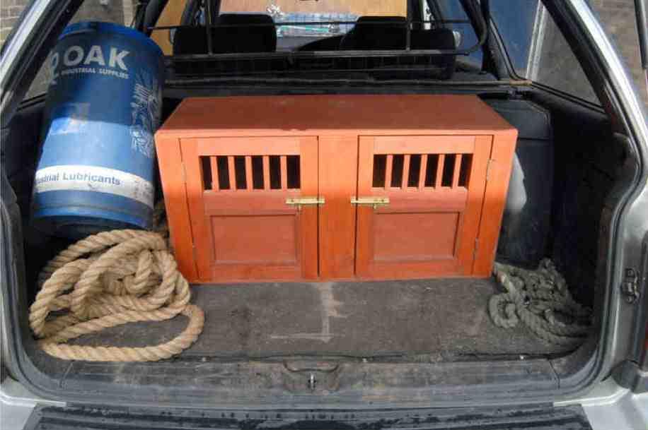 Men sentenced following Harewood badger baiting — Harrogate
