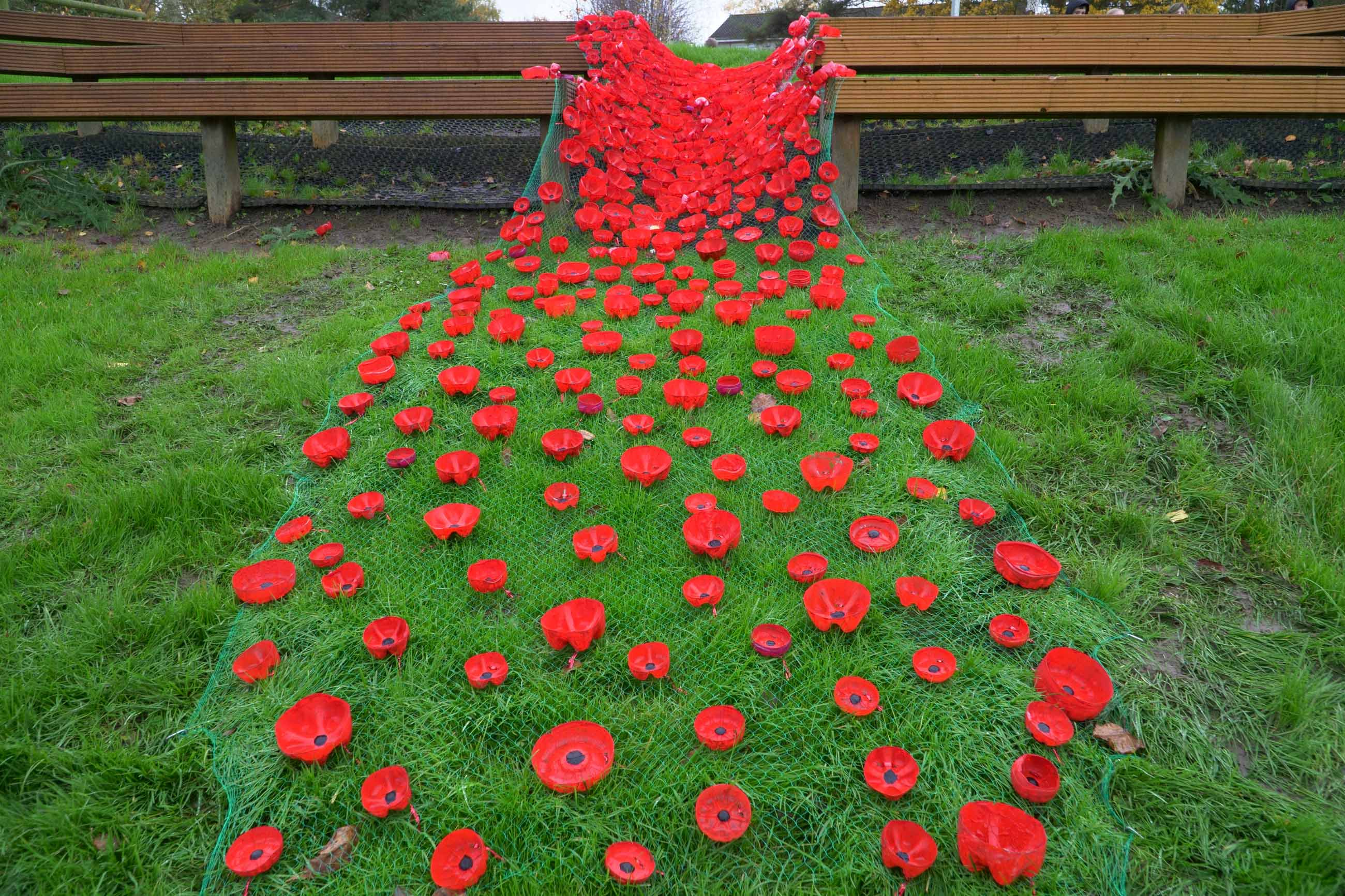 Saltergate Junior Schools cascade of poppies